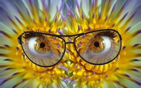 Картинка глаза, цветы, очки, циферблат, зрачки