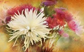 Картинка цветы, текстура, фон