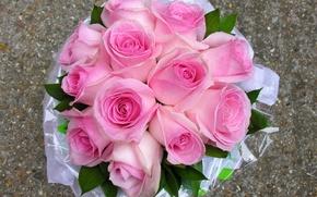 Картинка фото, Цветы, Розовый, Букет, Розы