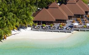 Обои песок, пляж, пальмы, берег, остров, мальдивы, сейшелы