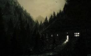 Картинка лес, птицы, природа, дом, дождь, мостик
