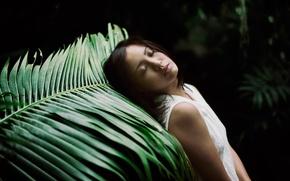 Картинка девушка, природа, лист, отдых, сон