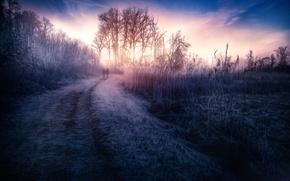 Картинка дорога, небо, трава, обработка, At dawn