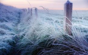 Картинка зима, иней, трава, столбы, забор, утро, ограда, мороз, декабрь