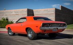 Картинка Dodge, Challenger, мускул кар, 1974