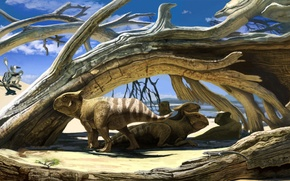 Картинка desert, small, Protoceratops, dinosaurs