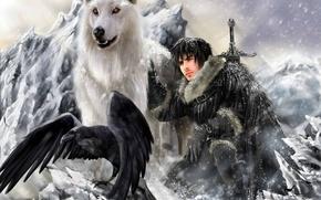 Картинка Ghost, лютоволк, direwolf, Игра Престолов, Песнь Льда и Огня, Game of Thrones, Джон Сноу, John …