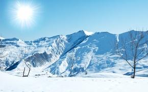 Картинка зима, солнце, снег, пейзаж, горы, дерево