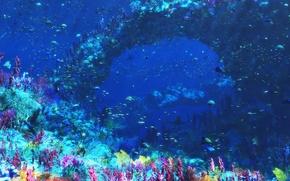 Картинка графика, море, рыбы, кораллы, подводный мир, Digital, An Octopus's Garden