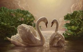Обои романтика, картина, вечер, двое, лебеди