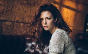 Картинка взгляд, портрет, Аня, свитер, Анна Заболоцкая