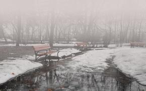 Картинка зима, туман, парк, скамейки