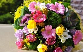 Картинка цветы, букет, тюльпаны, Розы, герберы, фрезия
