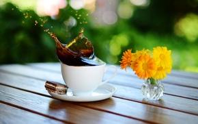 Обои макро, цветы, брызги, стол, кофе, всплеск, печенье, чашка, ваза, блюдце