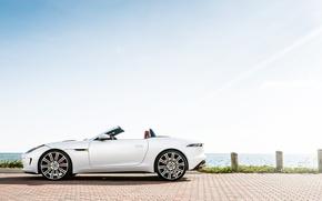 Картинка Jaguar, white, F-Type, profile