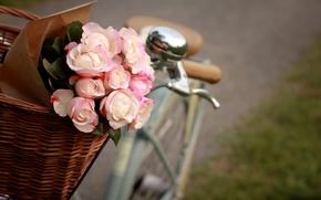 Картинка цветы, велосипед, корзина, розы, пакет, розовые, белые