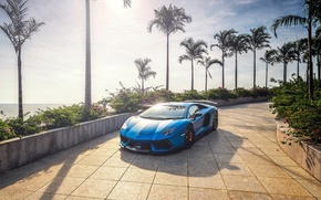 Картинка солнце, пальмы, Синий, Lamborghini, Aventador, lp700-4