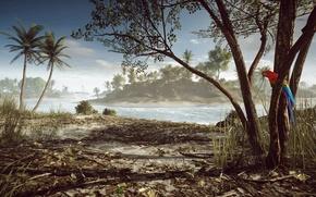 Картинка Пальмы, Попугай, Battlefield 4, Парасельские Острова, Paracel Storm