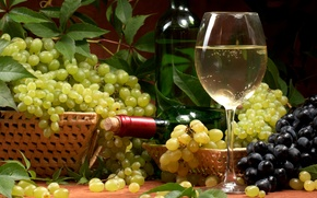 Обои бутылка, белое, виноград, бокал, вино, корзины, листья