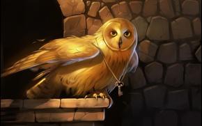 Картинка глаза, золото, сова, птица, крылья, ключ, арт
