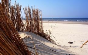 Обои песок, пляж, вода