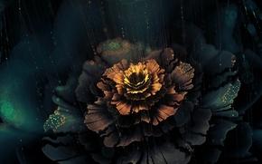 Картинка цветок, лучи, абстракция, сияние, графика, фрактал