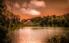 Картинка деревья, дом, Tranquility, водоём