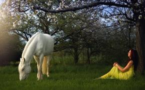 Обои конь, девушка, сад