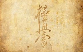 Картинка пергамент, киокушинкай, чинден, боевое искусство, кёкусинкай, стиль каратэ