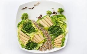 Картинка еда, кукуруза, тарелка, овощи, салат