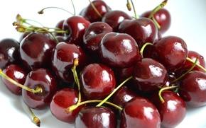 Обои ягоды, бордовый, food, еда, черешня, cherry