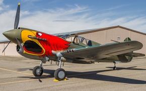 Картинка истребитель, аэродром, P-40C, Kittyhawk
