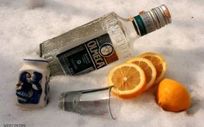 Картинка лимон, бутылка, апельсин, рюмка, соль, текила.ольмеко