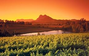 Картинка небо, деревья, горы, пруд, поля, зарево, Африка, кусты, ЮАР, плантация, Simonsberg