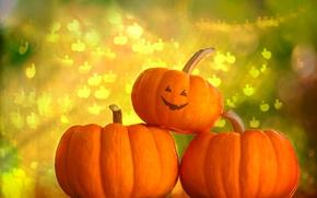Картинка фон, тыквы, Хэллоуин, Helloween