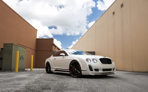Картинка continental, bentley, Wheel, gt, Ace Alloy