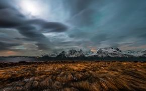 Картинка grass, water, winter, clouds, Northern Lights