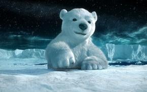 Обои лед, снег, полярный медведь