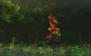 Обои цветы, графика, digital, природа, First Blush, деревья, осень, лес