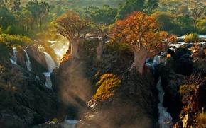 Картинка свет, деревья, природа, Африка, река Кунене, водопад Эпупа, граница между Анголой и Намибией
