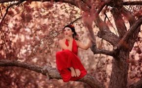 Картинка девушка, красное платье, на дереве