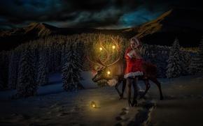 Картинка девушка, олень, Winter Wonderland