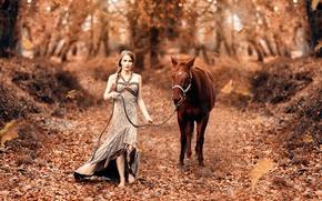 Картинка Fairy tale, девушка, Alessandro Di Cicco, лошадка, осень, листья