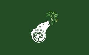 Картинка белый, листья, стиль, волк, собака, минимализм, зеленый фон, wolf