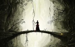 Обои рисунок, скалы, мост, растения