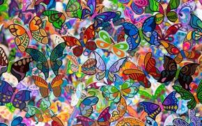 Картинка бабочки, фон, цвет