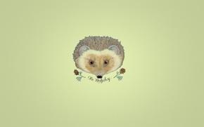 Картинка надпись, минимализм, ветка, ежик, шишки, желтый фон, hedgehog