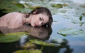 Обои девушка, озеро, взгляд, Nymphe