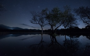 Картинка отражение, свет, холм, деревья, озеро, зеркало, силуэт, небо, ветки, звезды