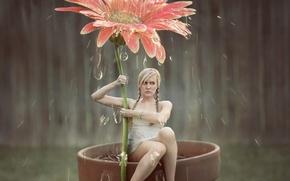 Картинка цветок, девушка, капли, арт, душ